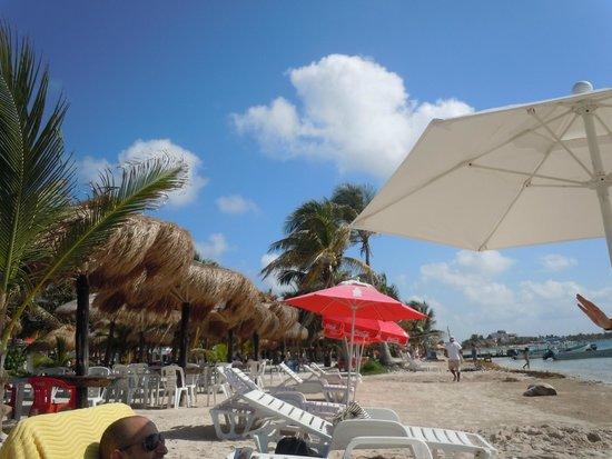 Tropicante Ameri-Mex Grill: beach