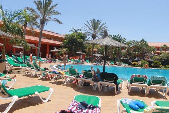 Oasis Village: bottom pool