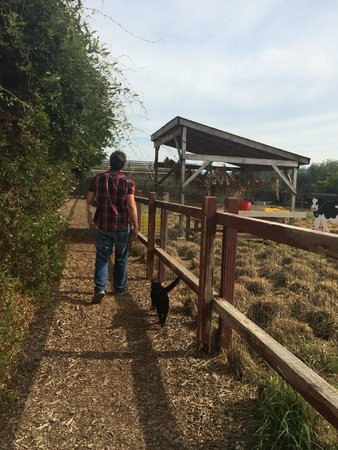 Frog's Leap Winery: The Farm Area