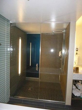 Wyndham Grand Chicago Riverfront: Shower