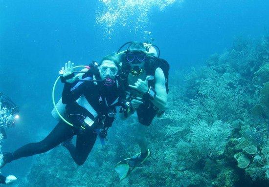 Ramon's Village Resort: diving is wonderful