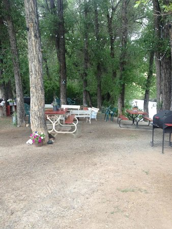 Black Bear Inn : Gathering area