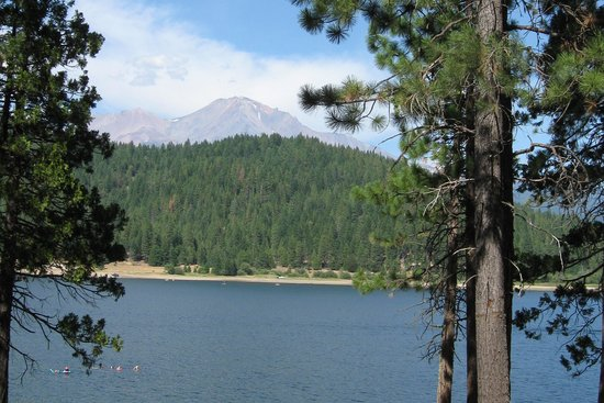 Lake Siskiyou: Mount Shasta from the shore of the Lake