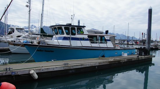 Alaska Saltwater Lodge Small Group Whale Watching, Wildlife & Glacier Tour: The Boat