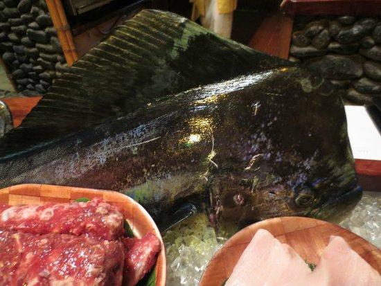 Bloody Mary's : Fresh fish produce