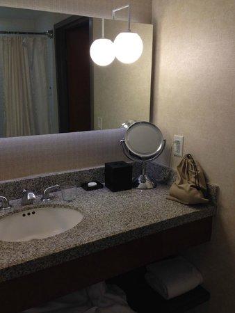 Loews Hollywood Hotel: Hairdryer etc in bathroom