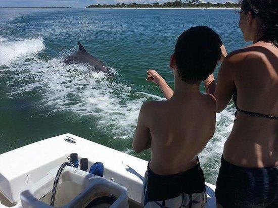 Captain Randys Fishy Business: Dolphins!