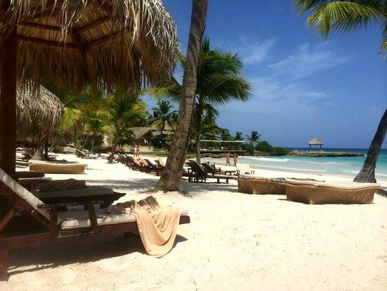 Eden Roc at Cap Cana: Beach