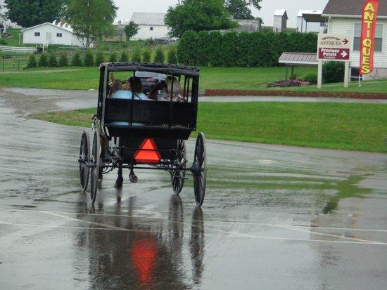 Amish Country: transporte Amish