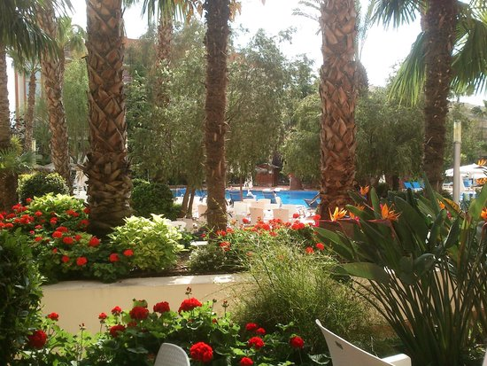 H10 Salauris Palace: Jardines