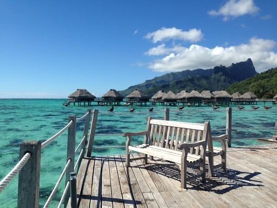 Hilton Moorea Lagoon Resort & Spa: 眺めの良いベンチ。