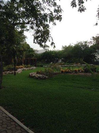 Sandos Playacar Beach Resort : garden.