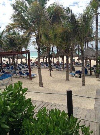 Sandos Playacar Beach Resort : vip area
