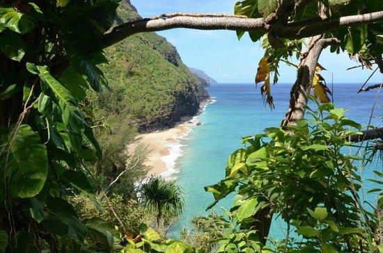 Kalalau Trail: Hanakapai' ai Beach as seen from the trail