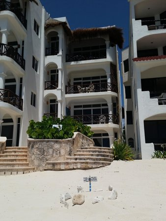 Playa Caribe: One of the many turtle nests