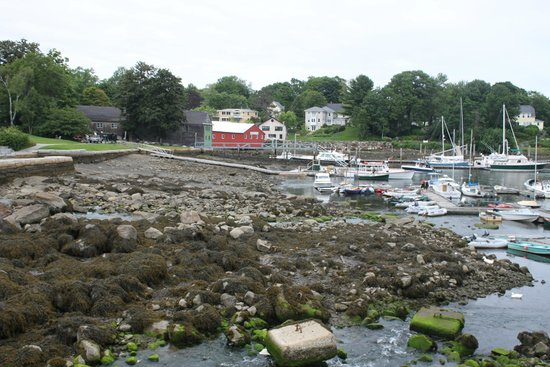Cappy's Chowder House : view from the window