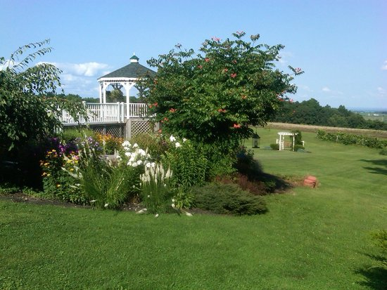 Los Gatos Bed & Breakfast: view from Casa Verde Cabin