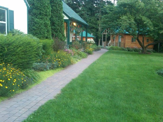 Los Gatos Bed & Breakfast: Walkway leading passed main House to cabins