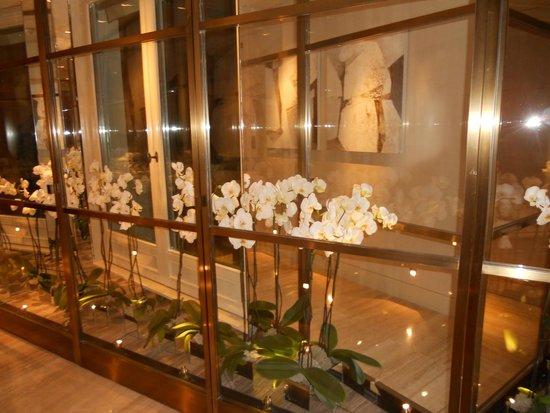 Four Seasons Hotel George V Paris: entree de la suite