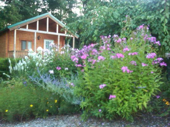 Los Gatos Bed & Breakfast: View from Flower Garden looking back at Casa Verde Cabin