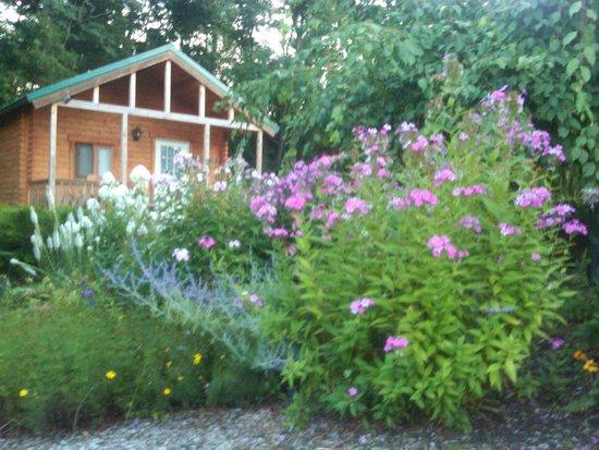 Los Gatos Bed & Breakfast : View from Flower Garden looking back at Casa Verde Cabin