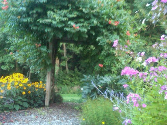 Los Gatos Bed & Breakfast: Flower Garden