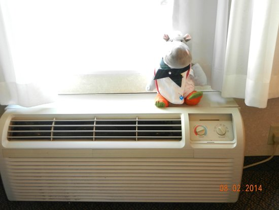Comfort Inn & Suites: great AC- just ask the hippo
