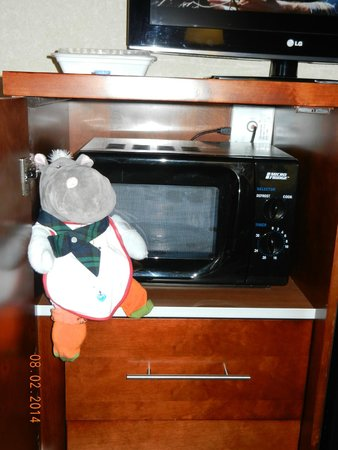 Comfort Inn & Suites: the microwave- and my hippo