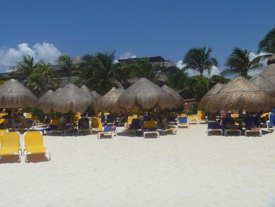 Iberostar Tucan Hotel: .