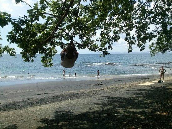 Hotel Coco Beach & Casino: Swinging on the beach !!!
