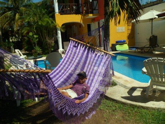 El Acuario Hotel: hamacas en piscina