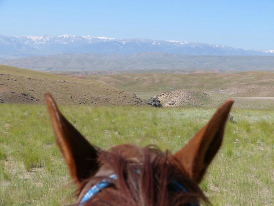 The Lazy L&B Ranch: View from my horse