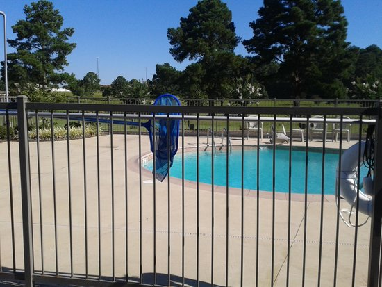 Rodeway Inn & Suites Tupelo: Swimming pool