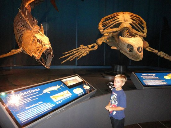 Tellus Science Museum : Impressive