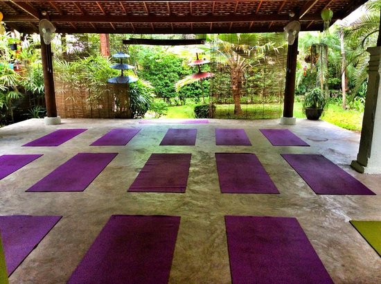 The Yogarden: The beautiful yoga sala