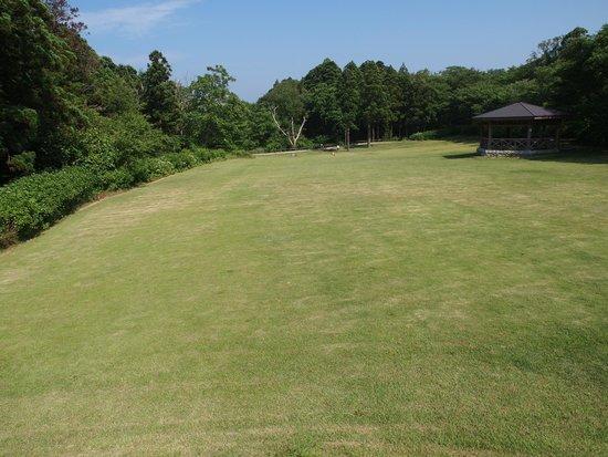 Niigata Ogata Greenery Park