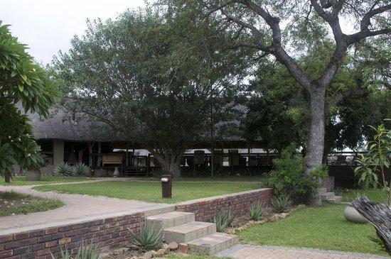 Arathusa Safari Lodge : Viewing the common area