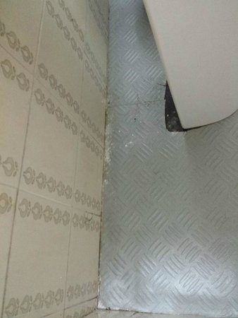 Hotel Lauria: disgusting