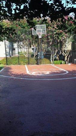 Homewood Suites by Hilton Atlanta - Cumberland / Galleria : Basketball Court