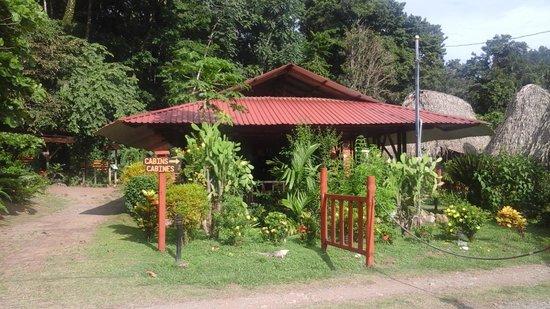 Hacienda Baru: Le site