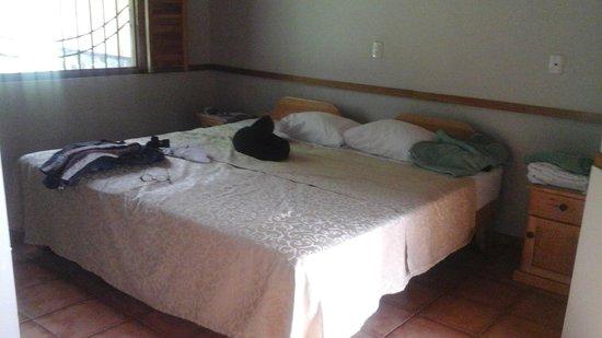 Hacienda Barú Lodge: Un partie de la chambre