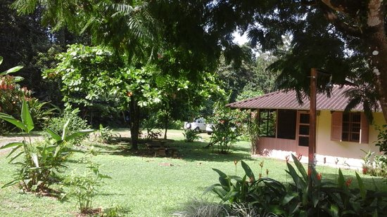 Hacienda Barú Lodge : Le site