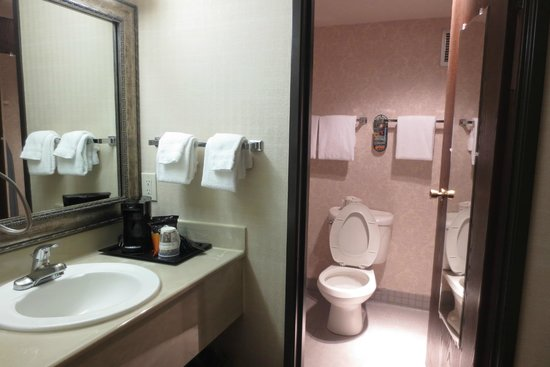 Best Western Executive Inn : bathroom