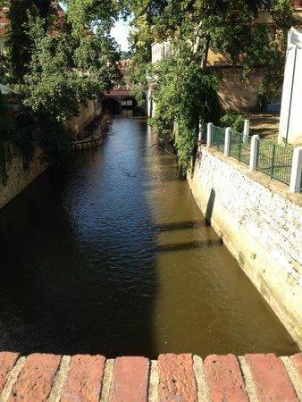 Kampa Garden: small bridge
