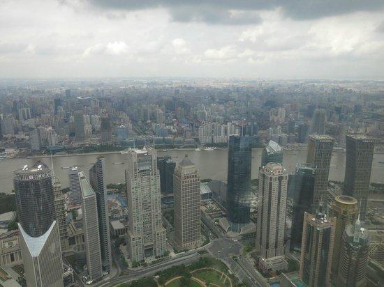 Park Hyatt Shanghai: Love the view