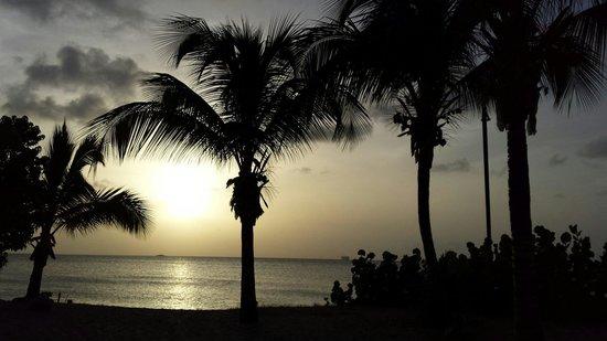 Galley Bay Resort: Beautiful Night!