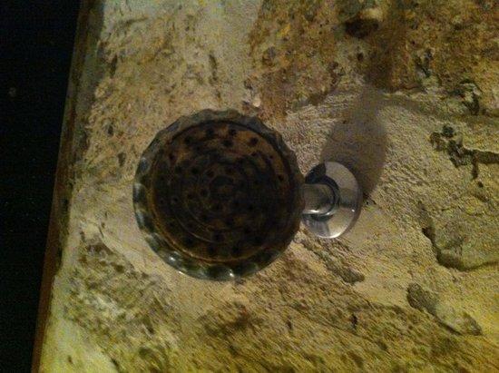 La Casa de Melgar Hostal: Shower head.  Really?
