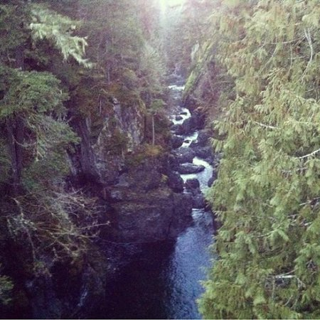Englishman River Falls Provincial Park: englishman river