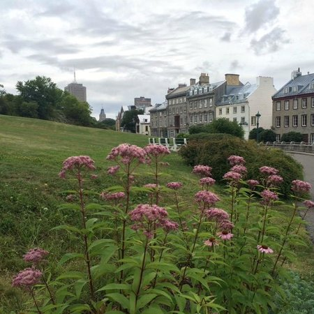 Manoir de L'Esplanade : Beautiful Quebec City!