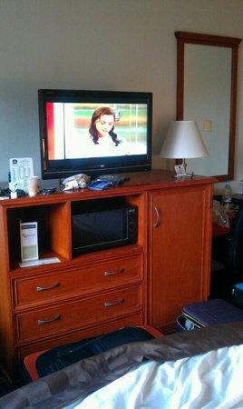 The Loyal Inn : Tv, Fridge and Microwave